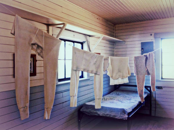 Photograph - Laundry Day by Micki Findlay