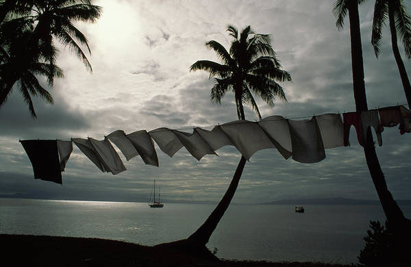 Wall Art - Photograph - Laundry Hangs Near Palm Trees Fronting by James L. Stanfield