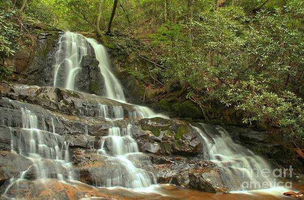 Photograph - Laurel Falls Landscape by Adam Jewell
