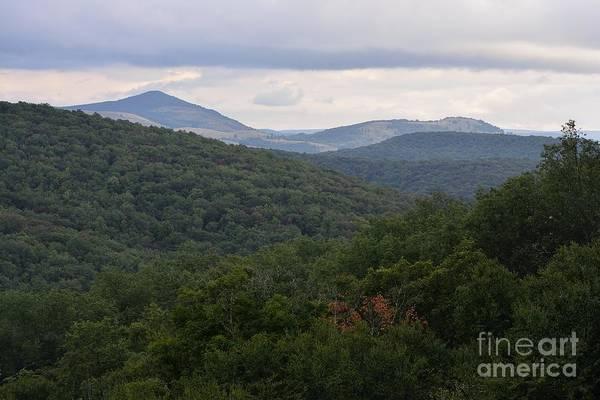 Photograph - Laurel Fork Overlook II by Randy Bodkins