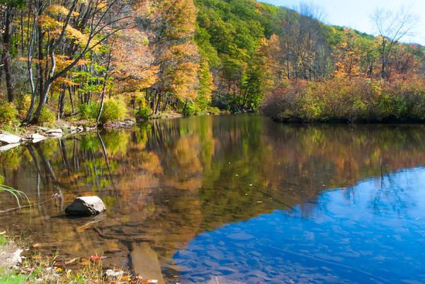 Photograph - Laurel Hill Creek Lan 344 by G L Sarti