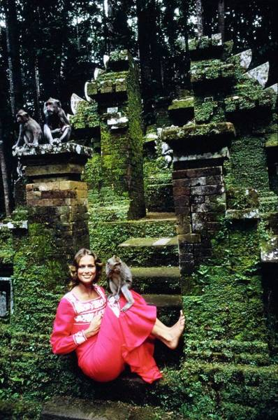 Animal Place Photograph - Lauren Hutton Wearing A Red Dress by Arnaud de Rosnay