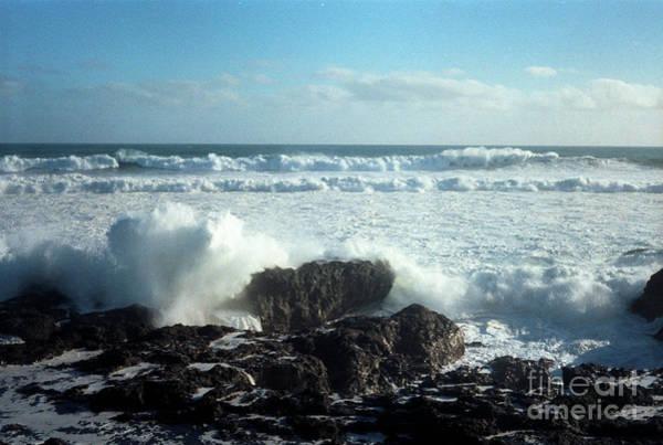 Photograph - Lava Beach Rocks On 90 Mile Beach by Mark Dodd