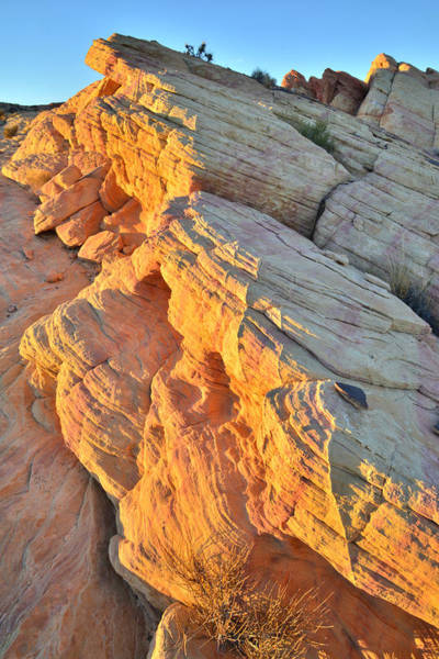Photograph - Lava Flow - Valley Of Fire by Ray Mathis