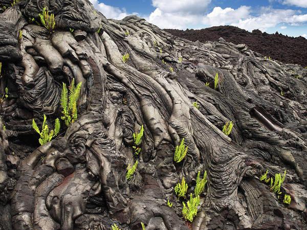 Big Island Photograph - Lava Formations by Ignacio Palacios