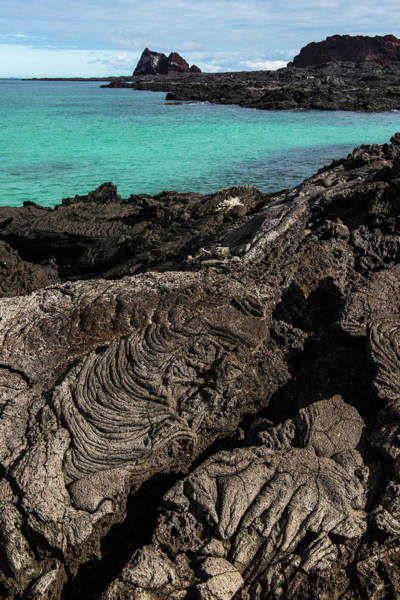 Basalt Photograph - Lava Formations Sullivan Bay Santiago by Pete Oxford