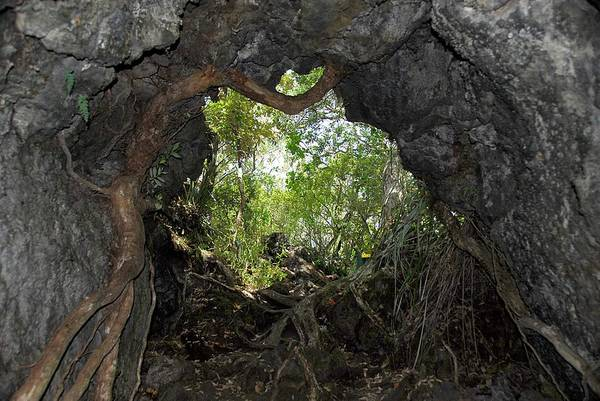 Wall Art - Photograph - Lava Tube by Cordelia Molloy/science Photo Library