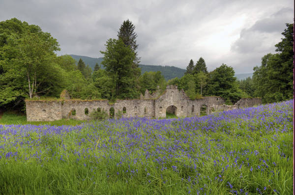 Photograph - Lavender And Ruins by Matt Swinden