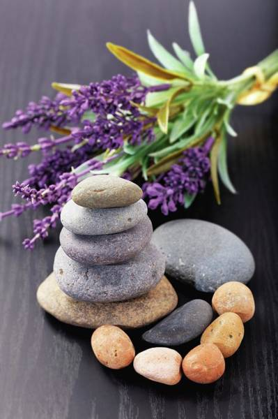 Wall Art - Photograph - Lavender Aromatherapy by Wladimir Bulgar/science Photo Library
