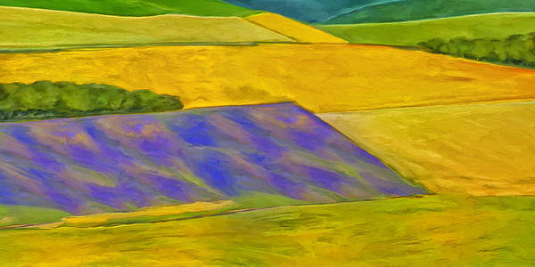 Painting - Lavender Field by Dominic Piperata