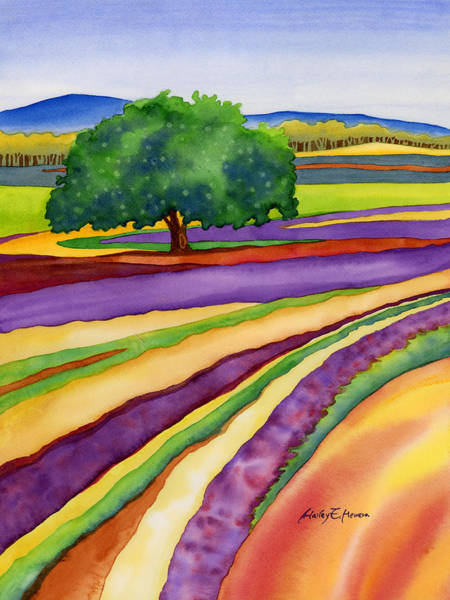 Wall Art - Painting - Lavender Field by Hailey E Herrera