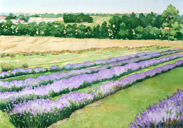 Rolling Hills Painting - Lavender Fields Forever by Mick Williams