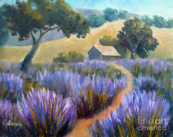 Lavender Path Art Print