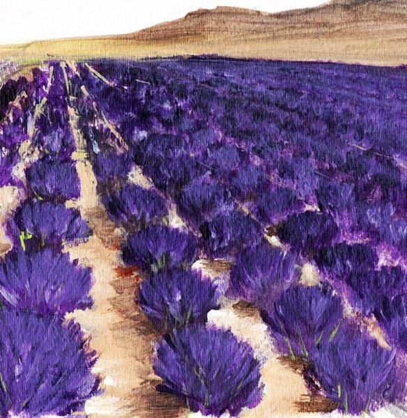 Painting - Lavender Study - Marignac-en-diois by Anastasiya Malakhova