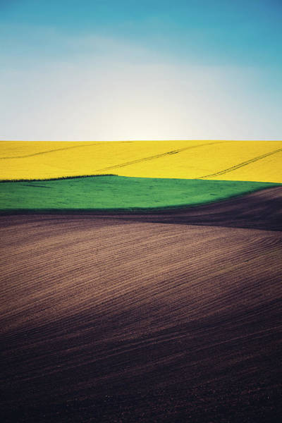 Cultivate Photograph - Layers Of Colorful Field by Borchee