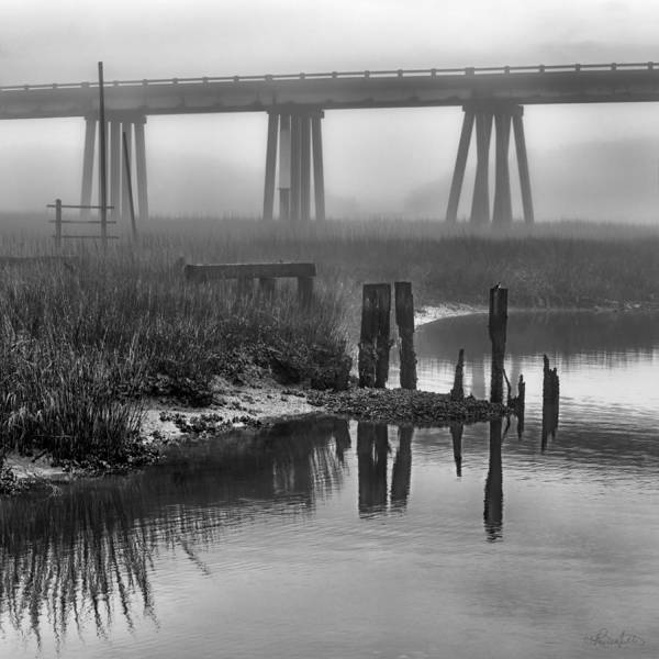 Photograph - Lazaretto Creek Pilings by Renee Sullivan
