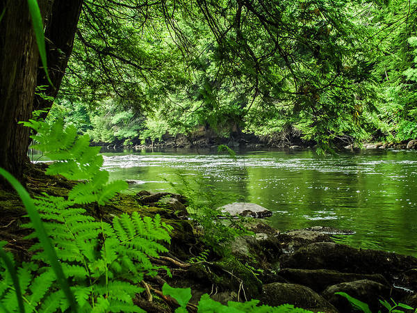 Photograph - Lazy Afternoon On The Schroon River by Louis Dallara