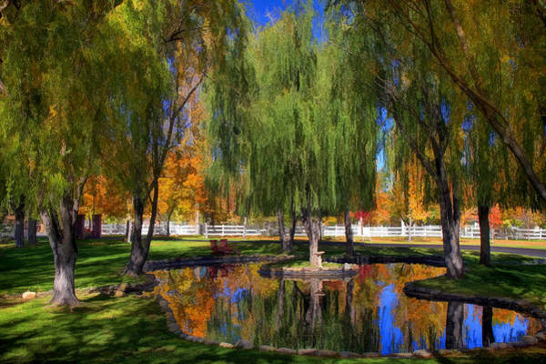 Canon 7d Photograph - Lazy Days Of Autumn by Donna Kennedy