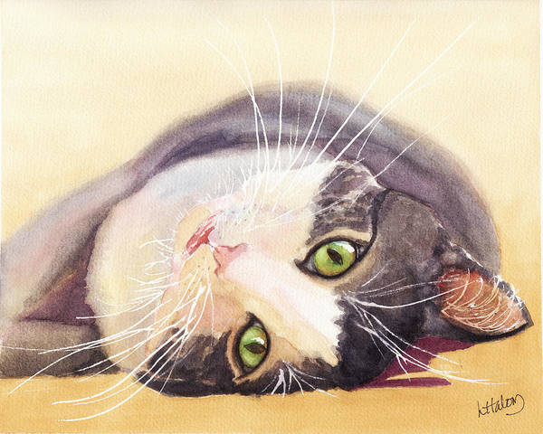 Painting - Lazy Kitty by Greg and Linda Halom