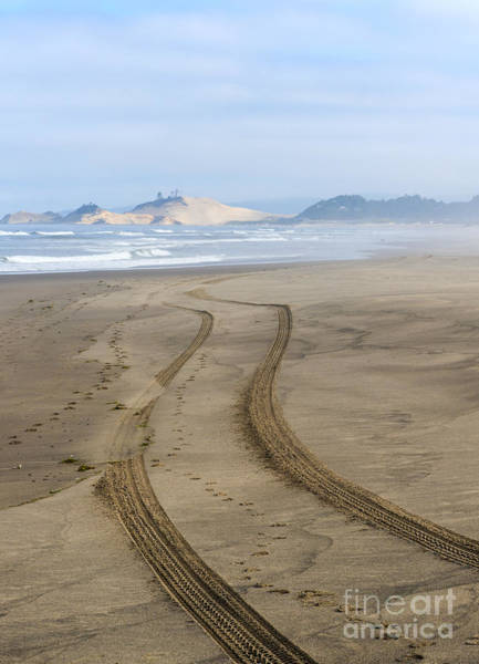 Oregon Dunes Photograph - Leading To The Cape by Mike Dawson