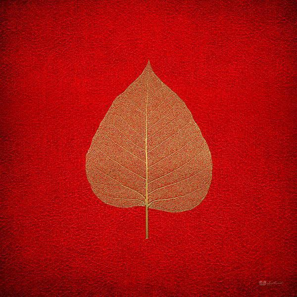Digital Art - Leaf Veins Skeleton - Leaf Structure In Gold On Red by Serge Averbukh