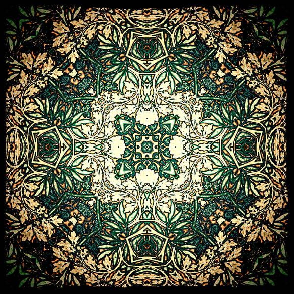Digital Art - Leafy Glade by Charmaine Zoe