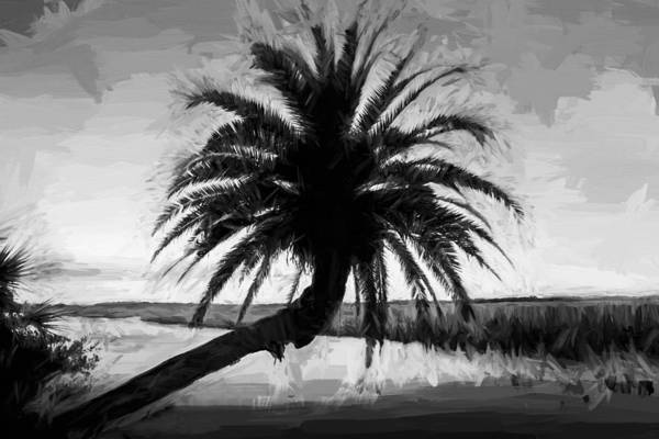 Ormond Photograph - Leanging Palm Tree Loop Road Painted Bw    by Rich Franco