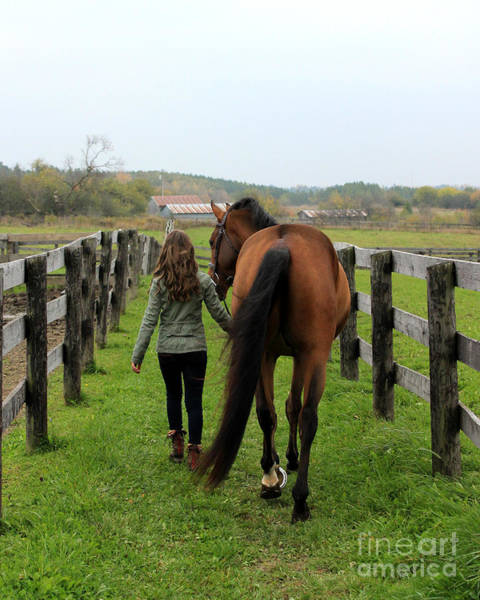 Photograph - Leanna Gino 9 by Life With Horses