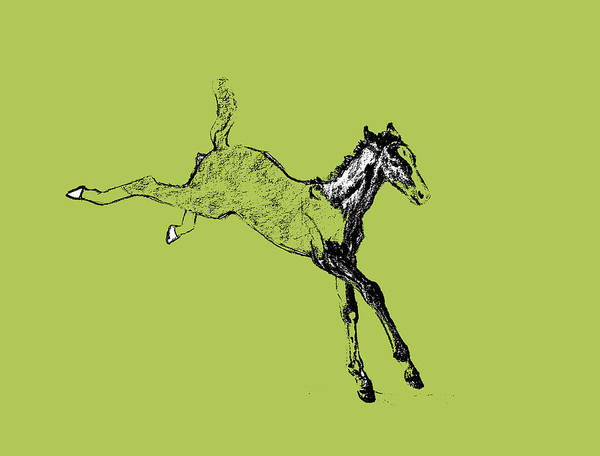 Leaping Foal Greens Art Print