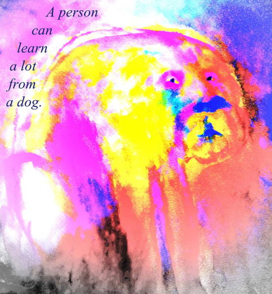 You Can Learn A Lot From The Dog Art Print