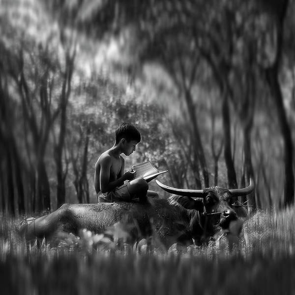 Abe Photograph - Learn Spirit by Antonyus Bunjamin (abe)