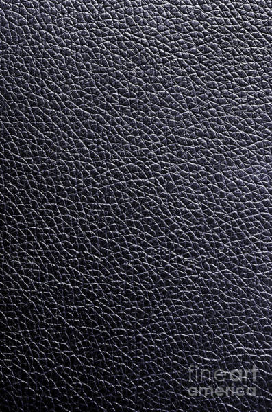 Wall Art - Photograph - Leather Background by Carlos Caetano