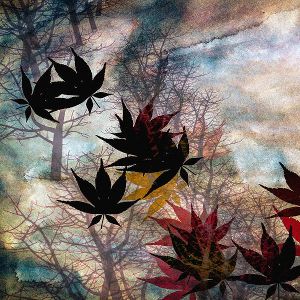 Painting - Leaves by Bob Orsillo