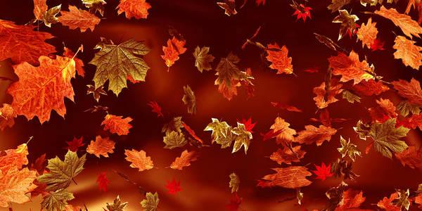 Digital Art - Leaves by Matt Lindley