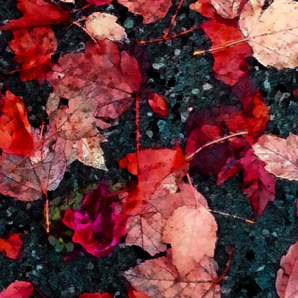 Jade Mixed Media - Leaves Red by Jade Knights