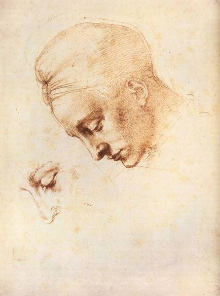 Buonarroti Wall Art - Painting - Leda's Head - Study by Michelangelo Buonarroti