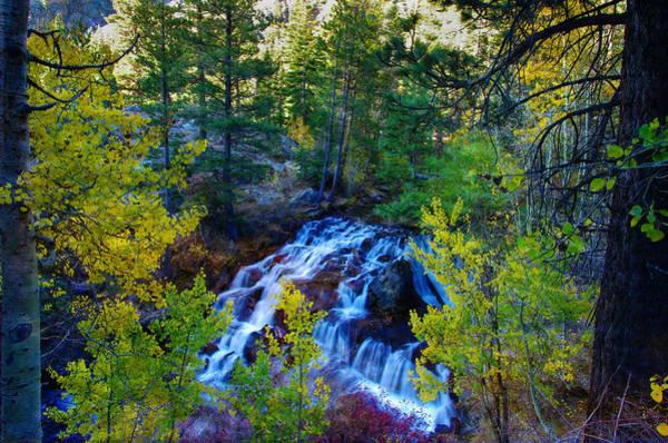 Eastern Sierra Photograph - Lee Vining Creek Falls by Scott McGuire