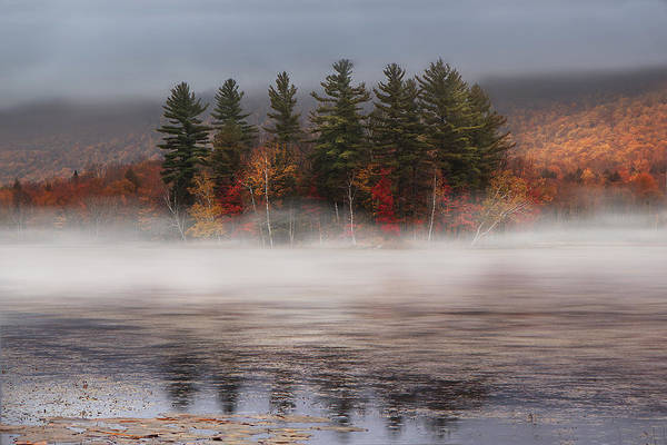 Wetlands Photograph - Lefferts Pond by Magda  Bognar
