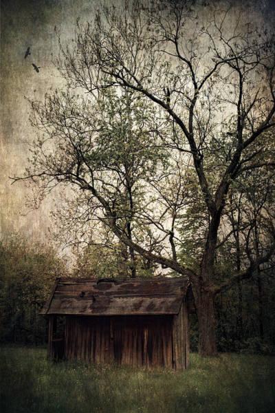 Photograph - Left Untouched by Dale Kincaid