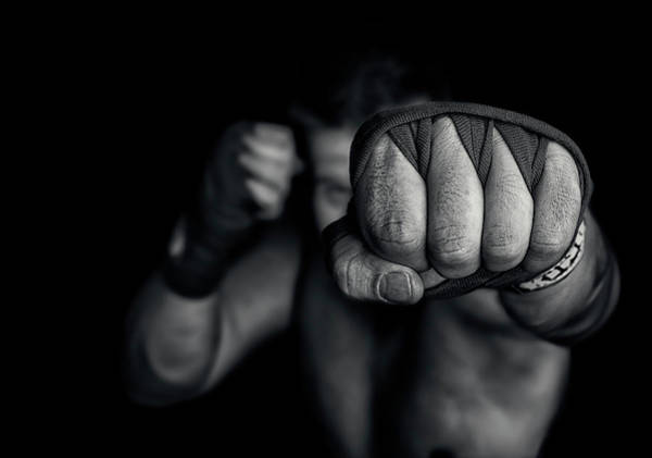 Boxer Wall Art - Photograph - Left Wing by Adrian Vrican