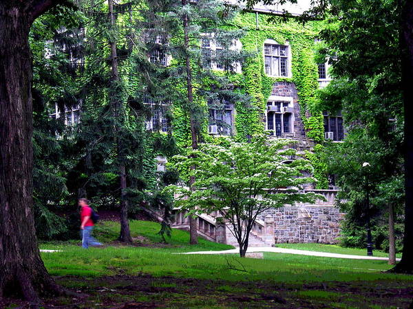 Lehigh University Wall Art - Photograph - Lehigh University Campus by Jacqueline M Lewis