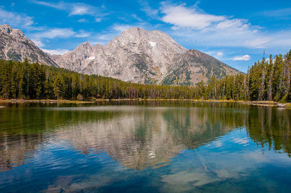 Photograph - Leigh Lake Trail Mount Moran by Brenda Jacobs