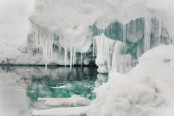 Icicles Wall Art - Photograph - Lemaire Channel, Antarctica by Janet Muir