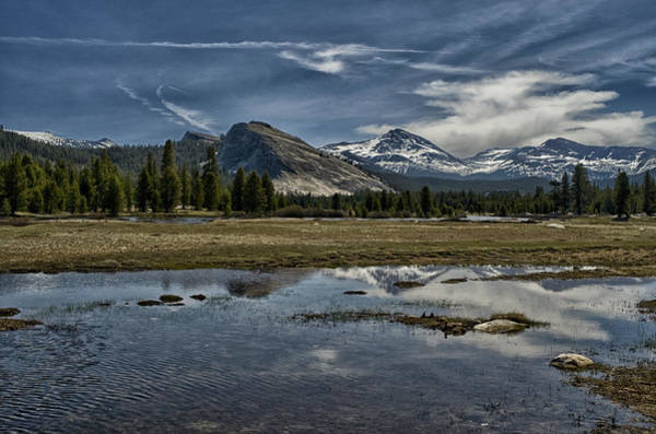 Photograph - Lembert Dome And Tuolumne Meadows by Cat Connor
