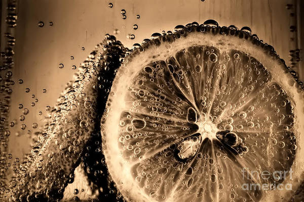 Wall Art - Photograph - Lemon Slices In Fizzy Water Old Style by Simon Bratt Photography LRPS