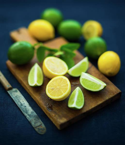 Lemon Photograph - Lemons And Limes by Thepalmer