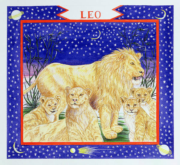Lion Cubs Photograph - Leo Wc On Paper by Catherine Bradbury