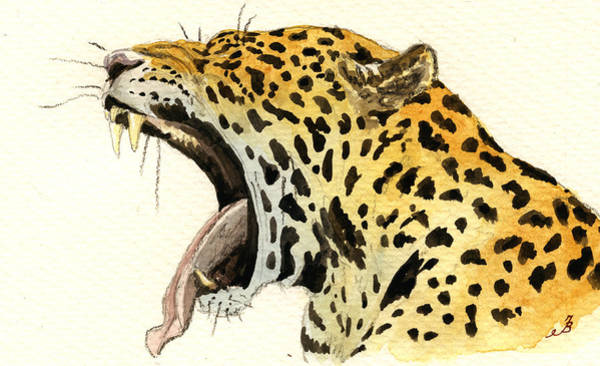 Jaguar Painting - Leopard Head by Juan  Bosco