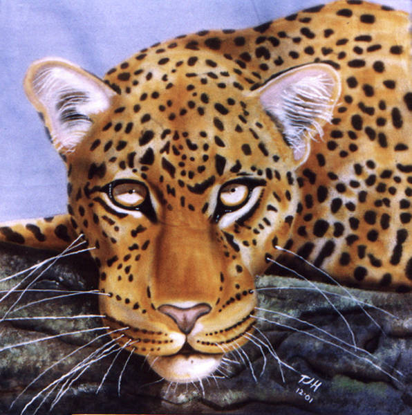Painting - Leopard In A Tree by Thomas J Herring