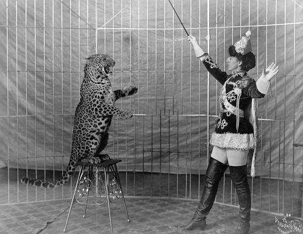 Photograph - Leopard Trainer, C1906 by Granger